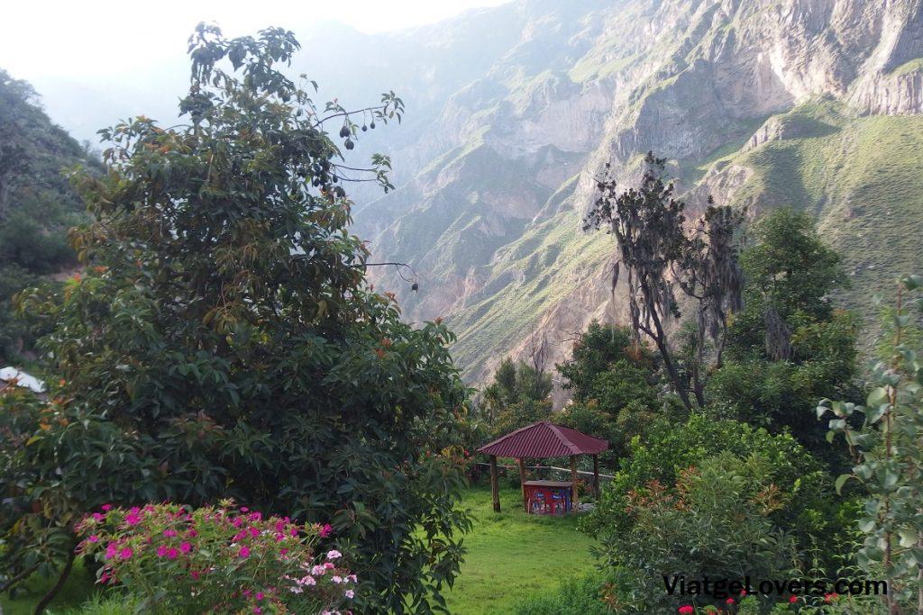 Localización primer alojamiento, Cañón del Colca