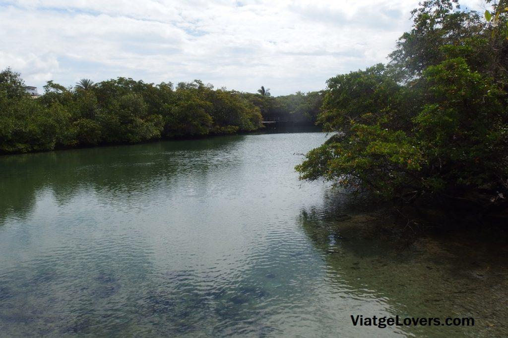 El lago de las Ninfas