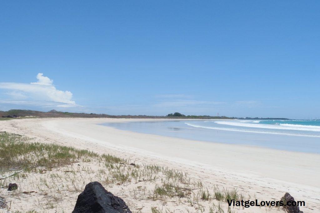 Isabela, Galápagos -ViatgeLovers.com