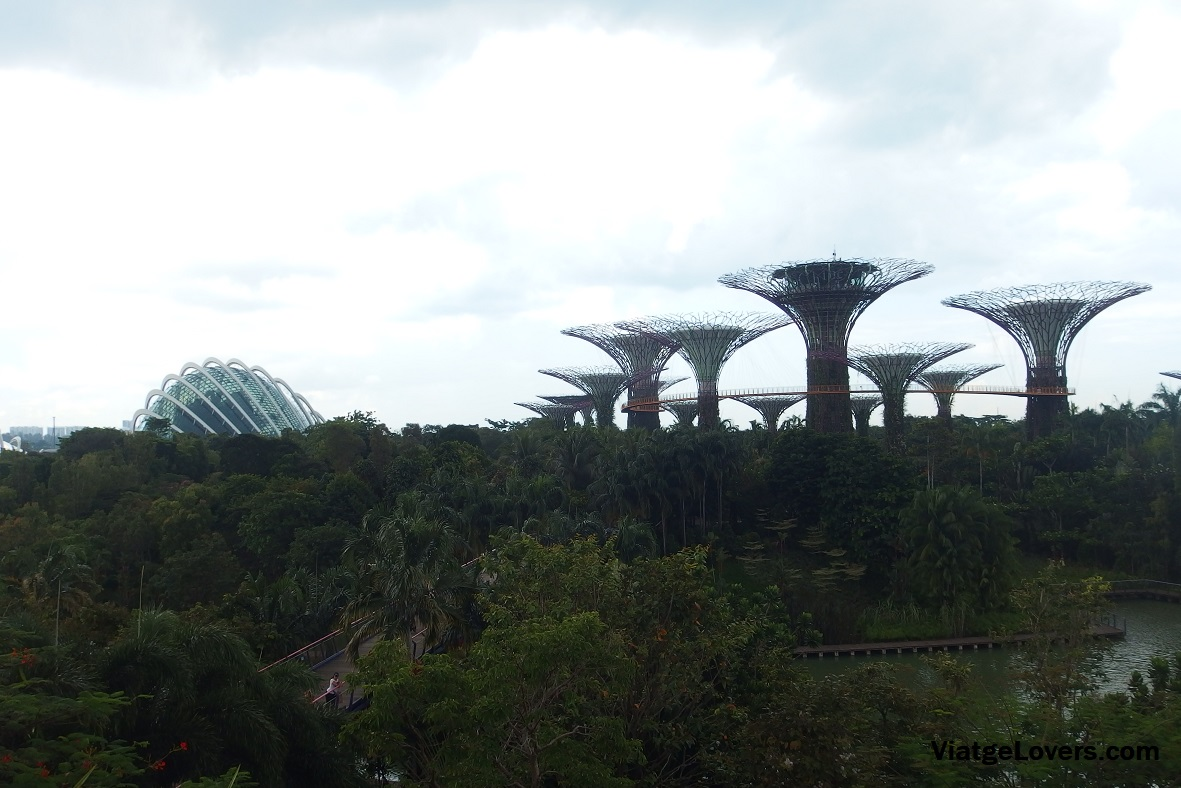 Vistas de Garden by the Bay desde Marina Sands Bay, Singapur