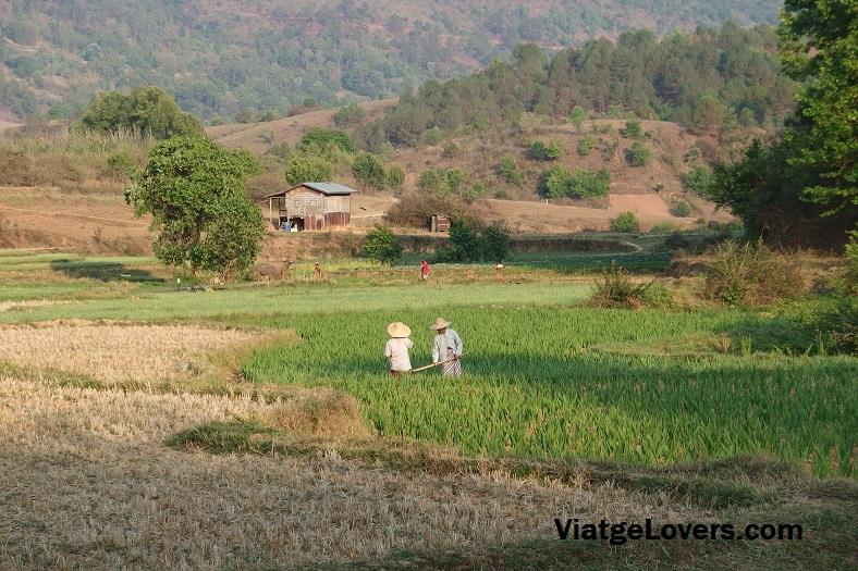 Llegando a la aldea donde íbamos a dormir, empezábamos a ver paisajes tan mágicos como este
