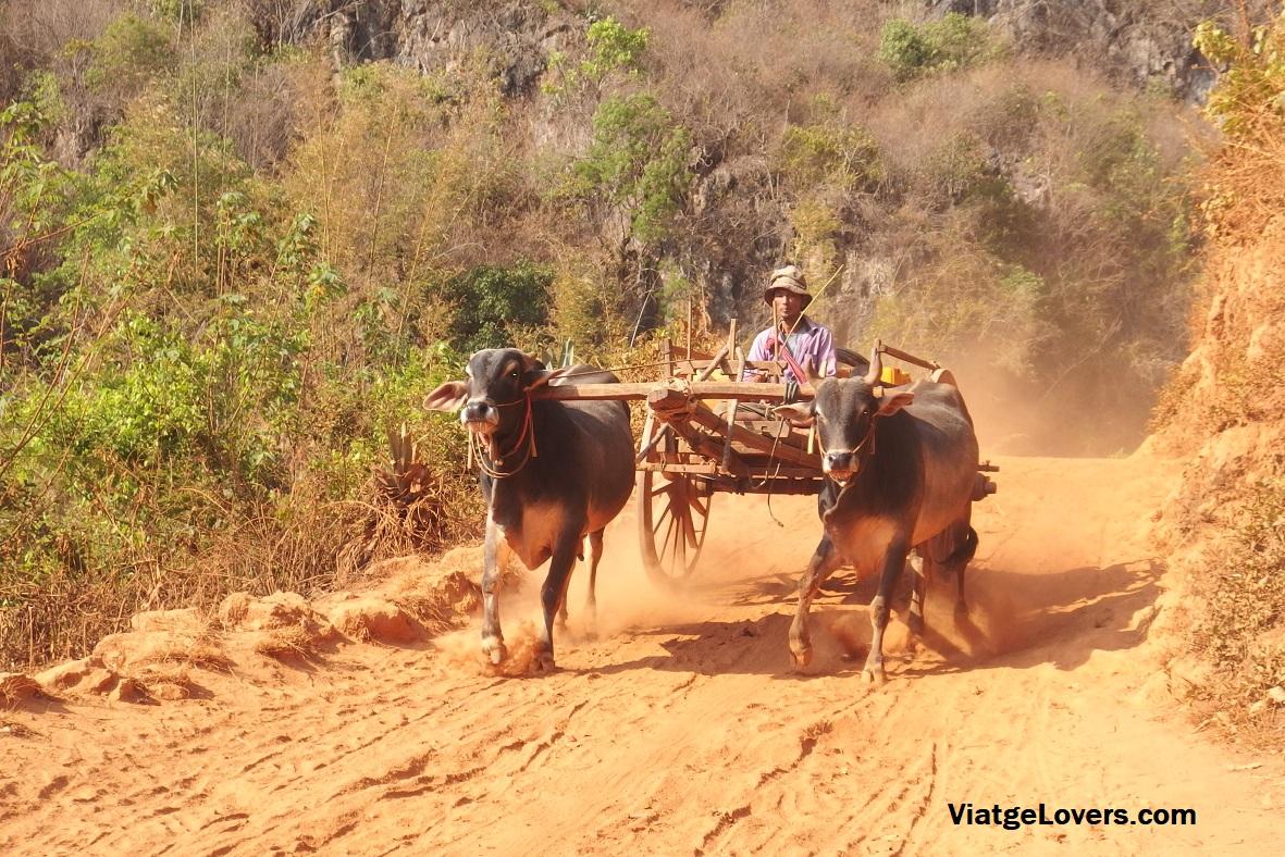 Trekking de Kalaw a Inle Lake, Myanmar -ViatgeLovers.com