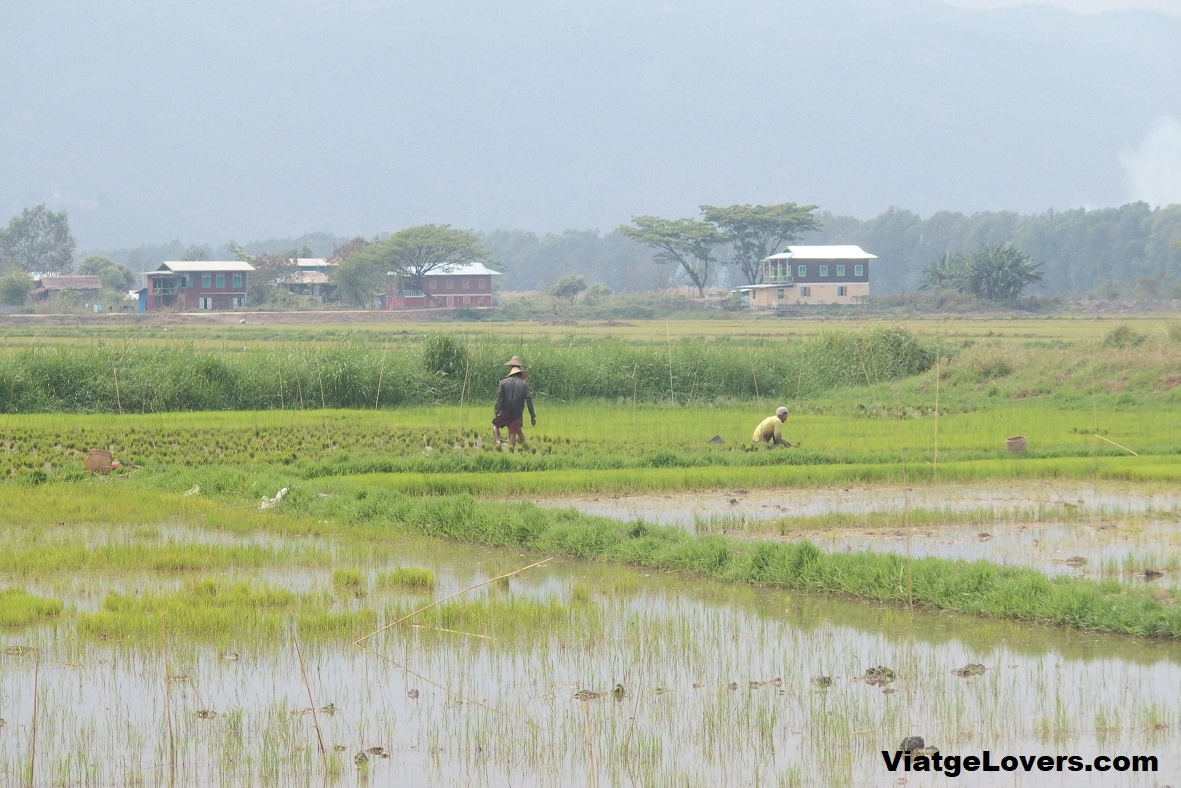 Alrededores del lago Inle, Shan state