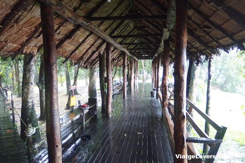 Kinabatangan, Borneo -ViatgeLovers.com