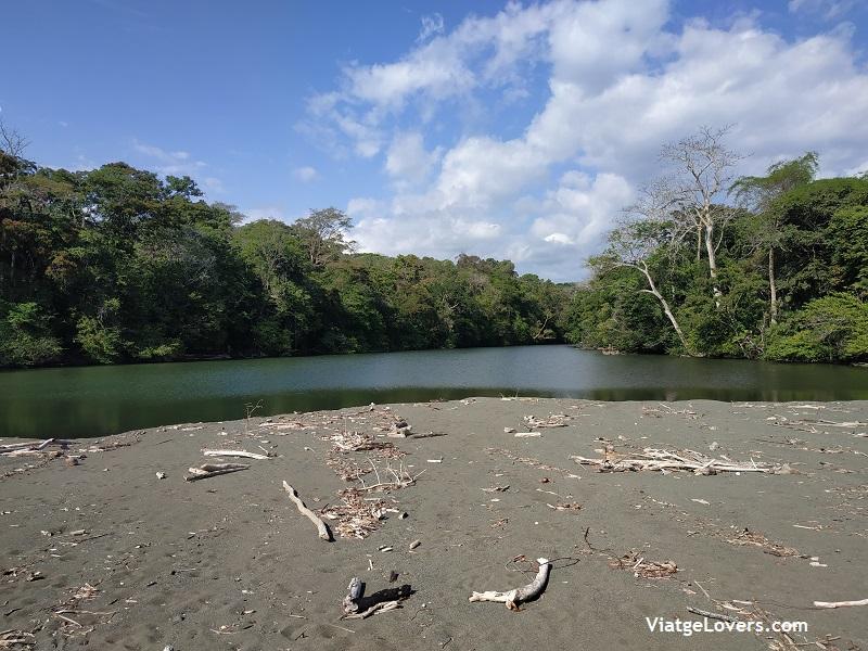 Corcovado, Costa Rica -ViatgeLovers.com