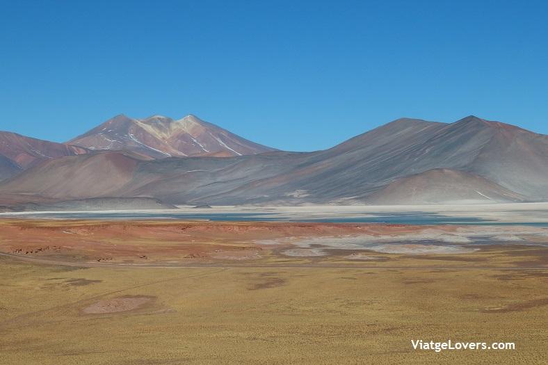 Lagunas Altiplánicas, Atacama -ViatgeLovers.com
