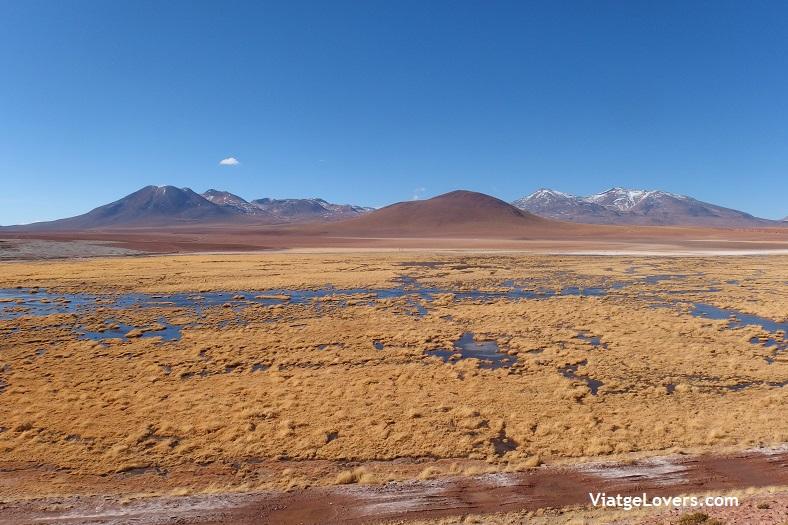 Géysers del Tatio, Atacama -ViatgeLovers.com