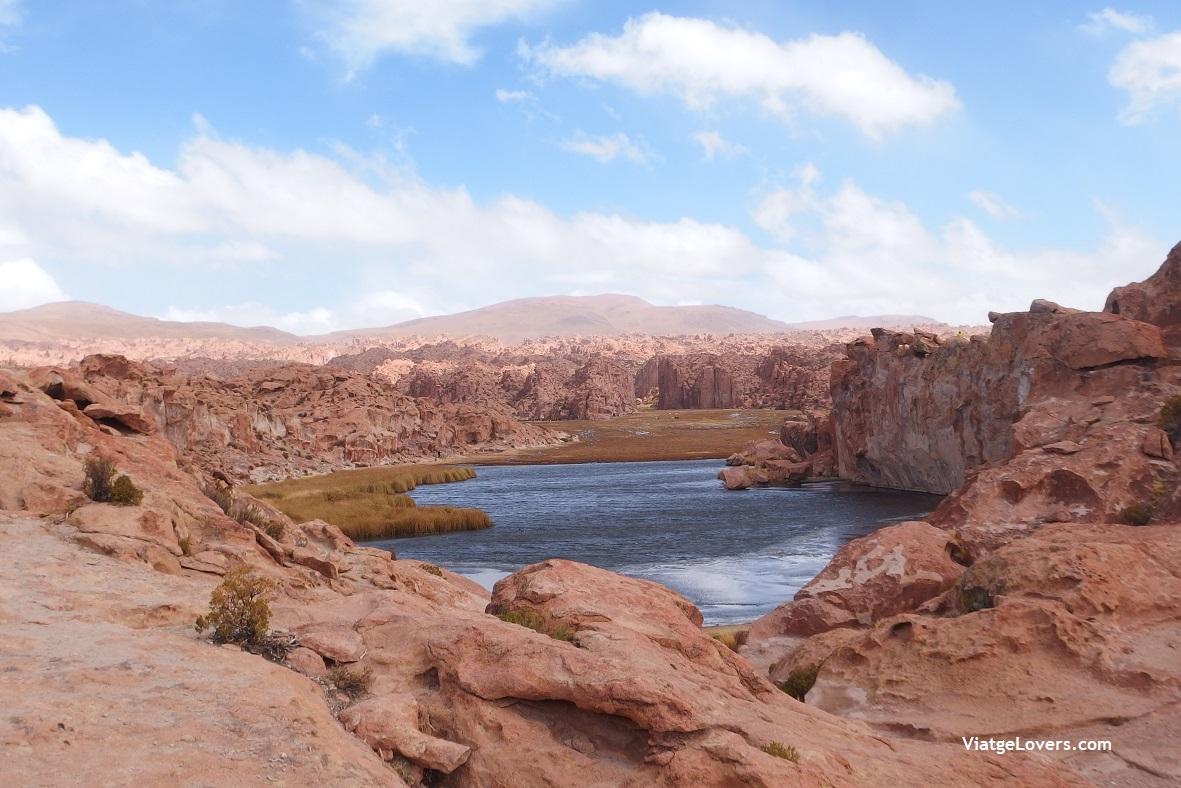 Laguna Negra, Bolivia -ViatgeLovers.com