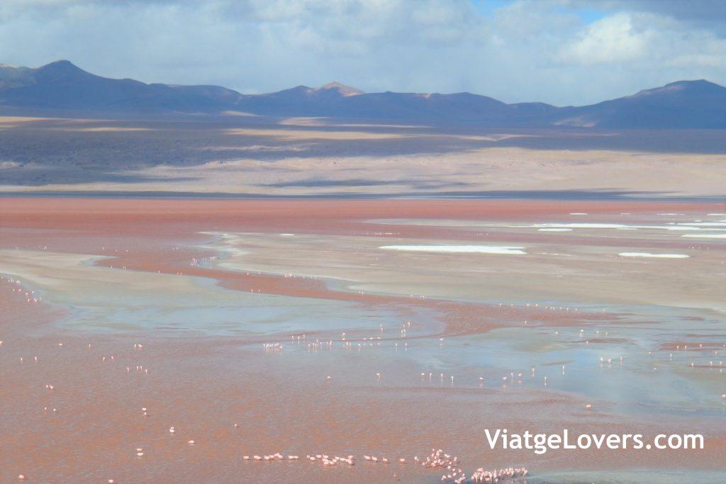 Ruta por el desierto de Atacama -ViatgeLovers.com