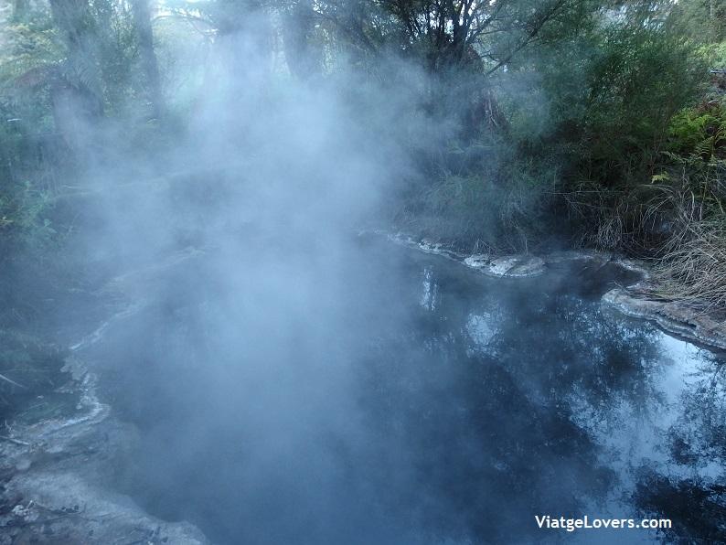 Waitomo caves, Nueva Zelanda -ViatgeLovers.com