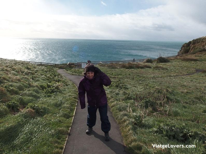 Otago Peninsula, Nueva Zelanda -ViatgeLovers.com
