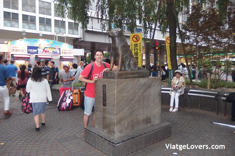 Hachiko. Shibuya. Japón -ViatgeLovers.com