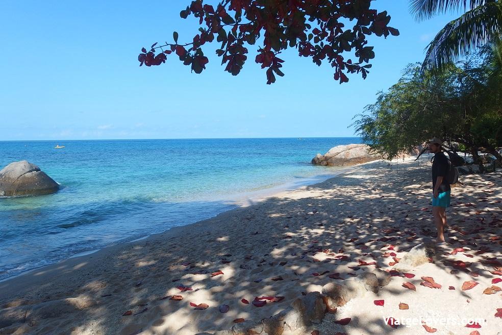Pinacle Beach. Koh Tao. Tailandia -ViatgeLovers.com