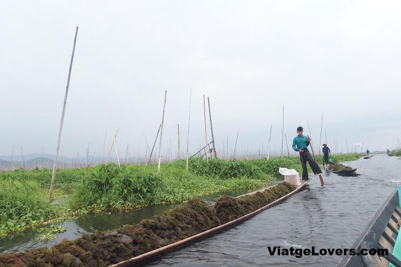 Lago Inle. Myanmar -ViatgeLovers.com