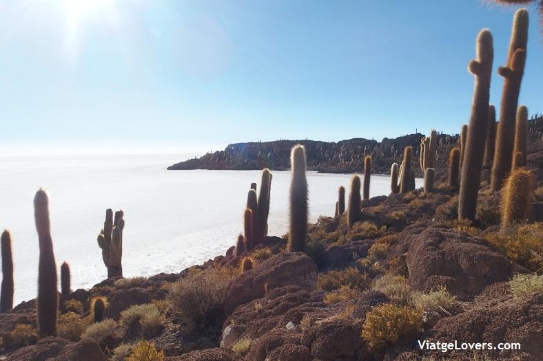 Salar de Uyuni -ViatgeLovers.com