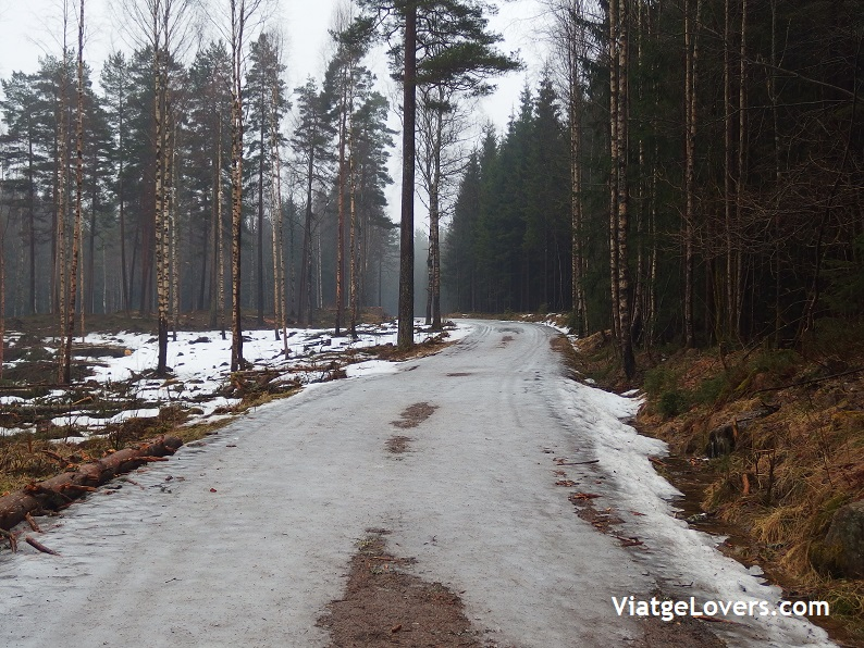 Lago Songsvann -ViatgeLovers.com