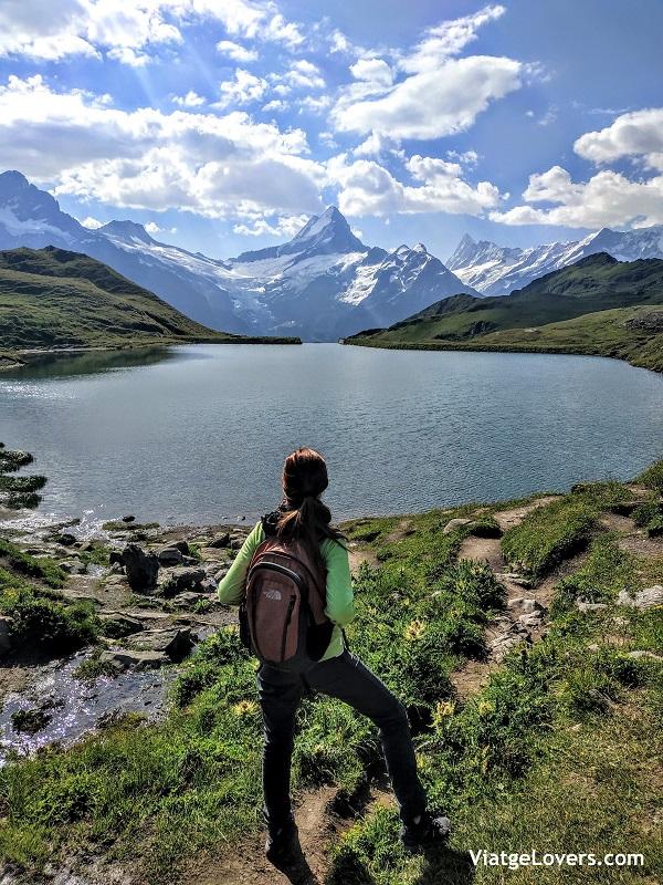 Bachalp, Suiza -ViatgeLovers.com