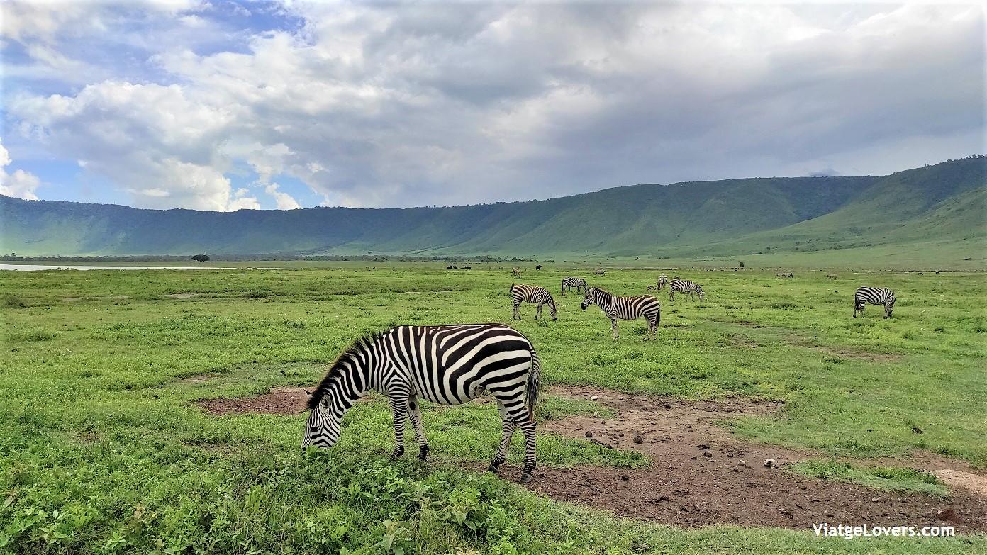Rutas por África. Tanzania -ViatgeLovers.com